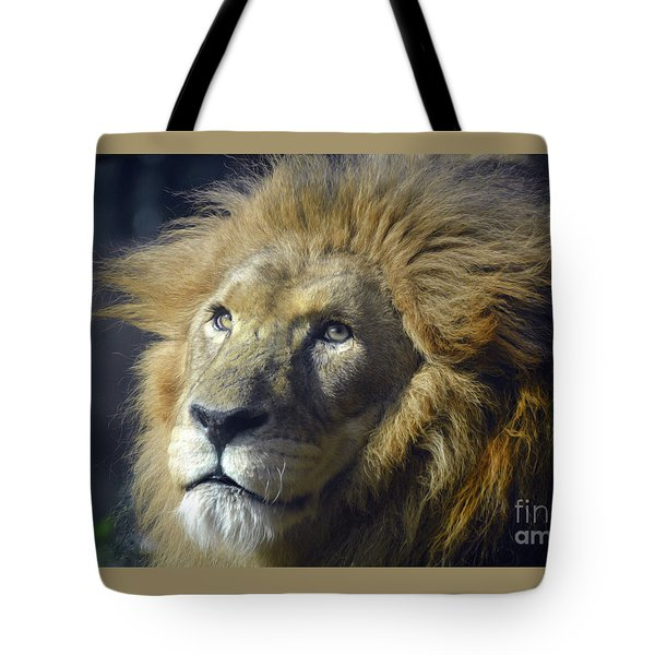 Tote Bag featuring the photograph Lion Portrait by Savannah Gibbs