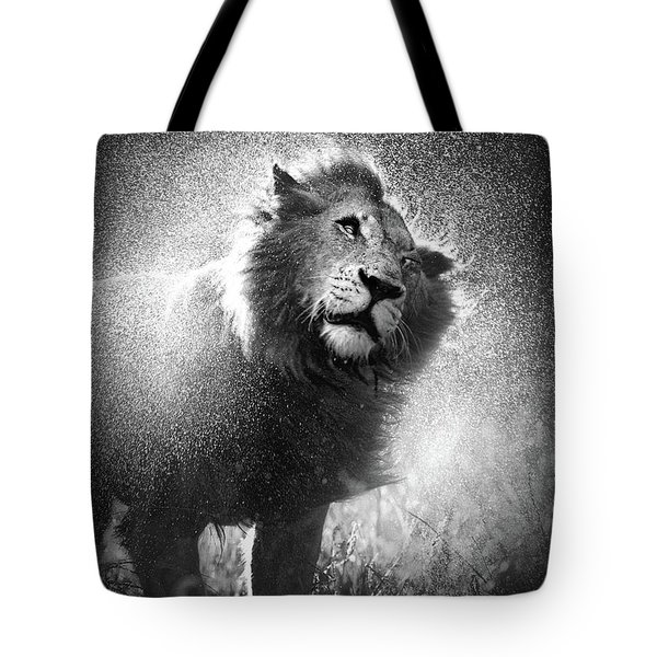Lion Shaking Off Water Tote Bag by Johan Swanepoel