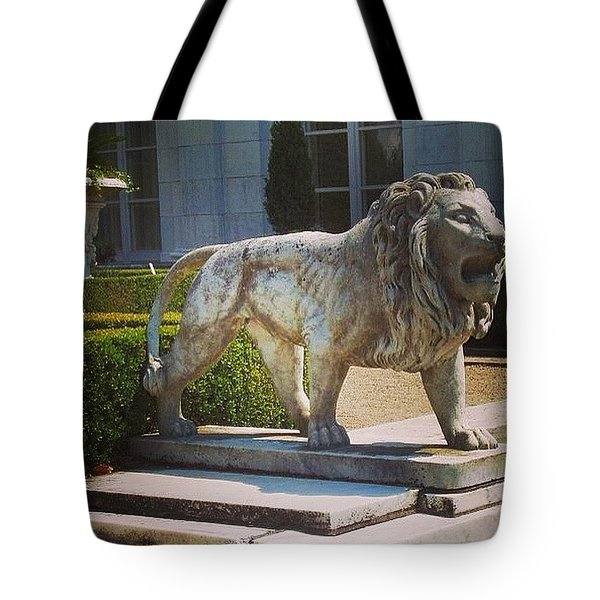 Guardian Of The Past Tote Bag