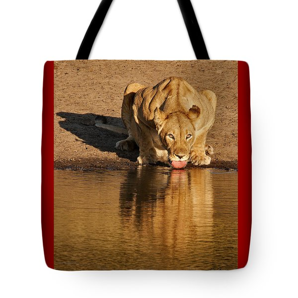 Lioness Drinking Tote Bag by Joe Bonita