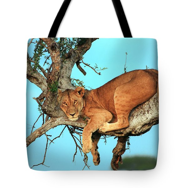 Lioness In Africa Tote Bag by Sebastian Musial