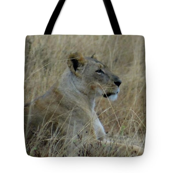 Lioness In The Grass Tote Bag