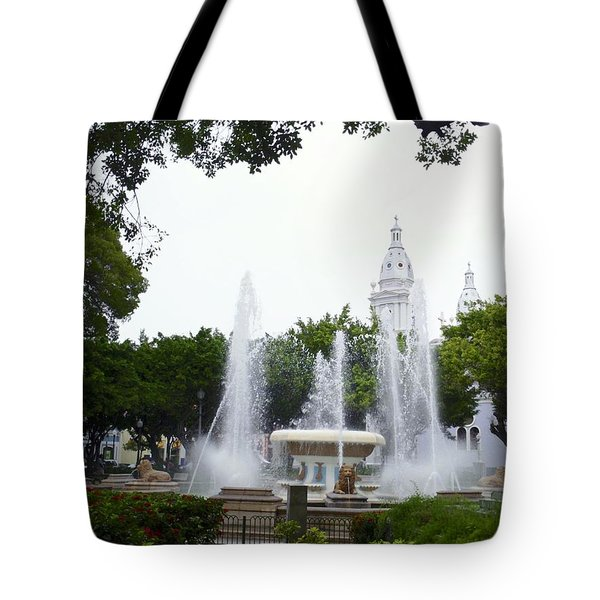 Lions Fountain Wide Tote Bag