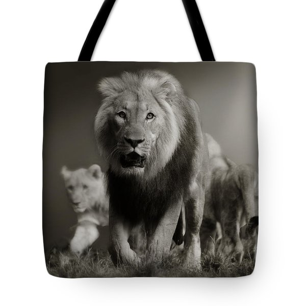 Tote Bag featuring the photograph Lions On Their Way by Christine Sponchia