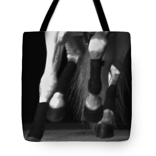 Tote Bag featuring the photograph Lipizzan 1 by Catherine Sobredo