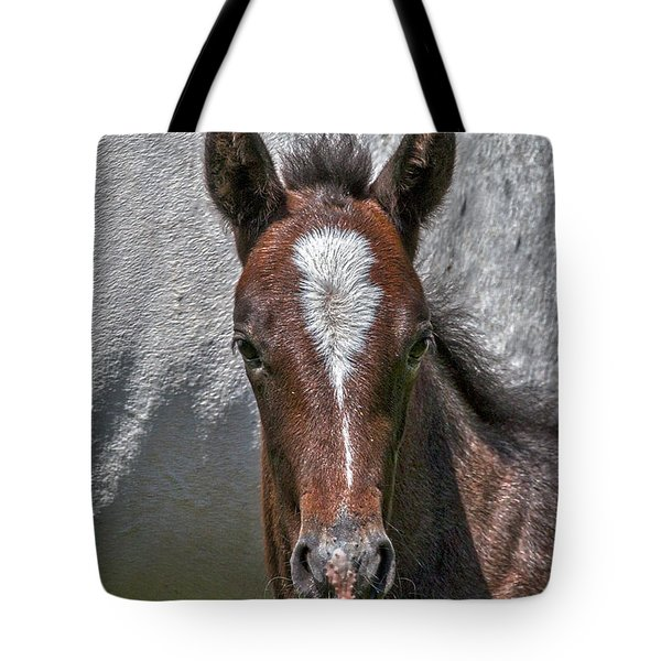 Tote Bag featuring the photograph Lipizzan Horses #2 by Stuart Litoff