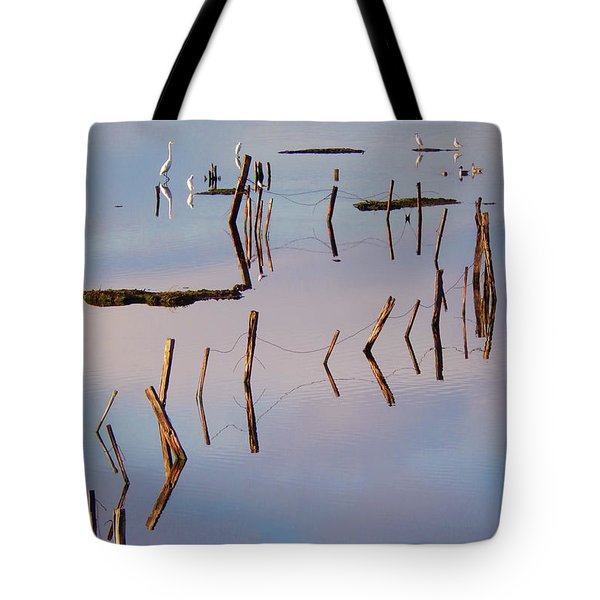 Liquid Assets Tote Bag