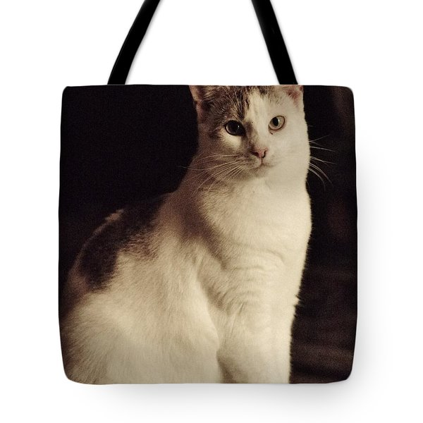 Lisa-lisa Posing Tote Bag
