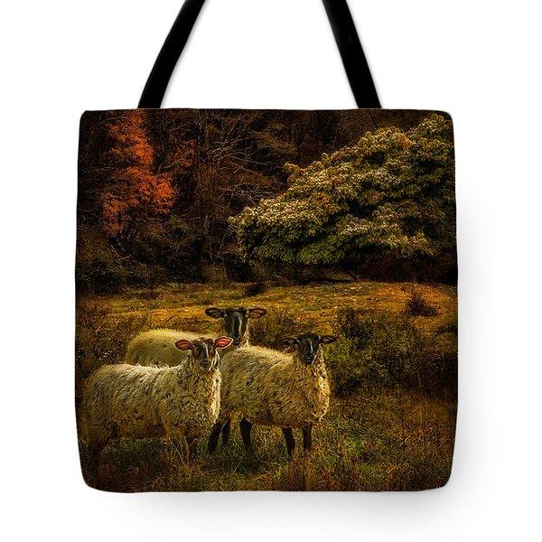 Listening Sheep 1282 Tote Bag