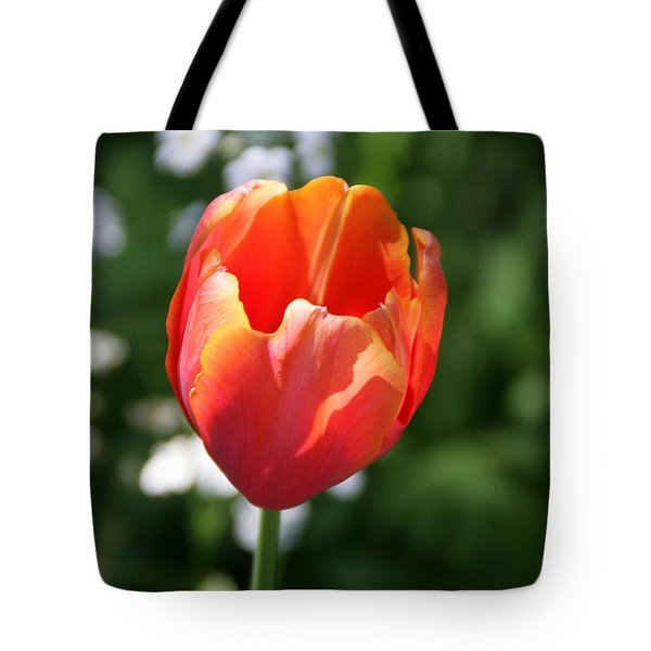 Lit Tulip 02 Tote Bag by Andrea Jean