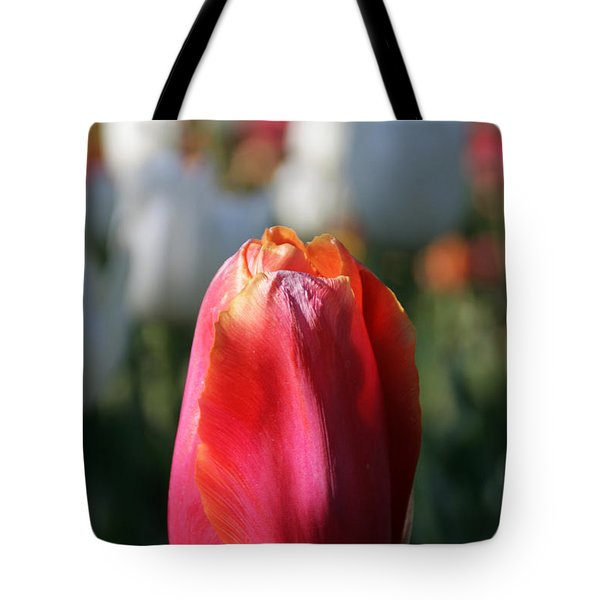 Lit Tulip 03 Tote Bag by Andrea Jean