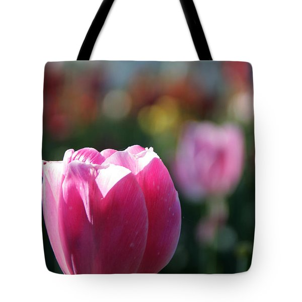 Lit Tulip 04 Tote Bag by Andrea Jean