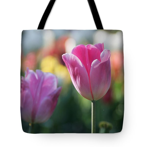 Lit Tulip 05 Tote Bag by Andrea Jean