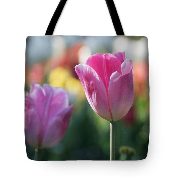 Lit Tulip 05 Tote Bag