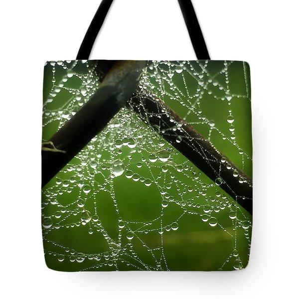 Lit Web Tote Bag