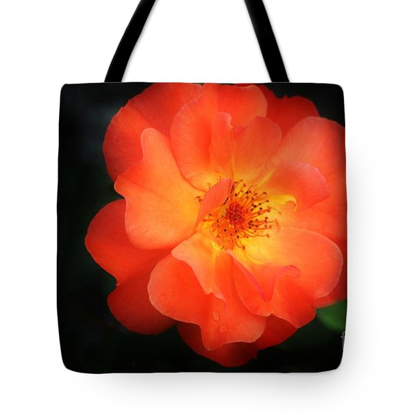 Lite Up Tote Bag