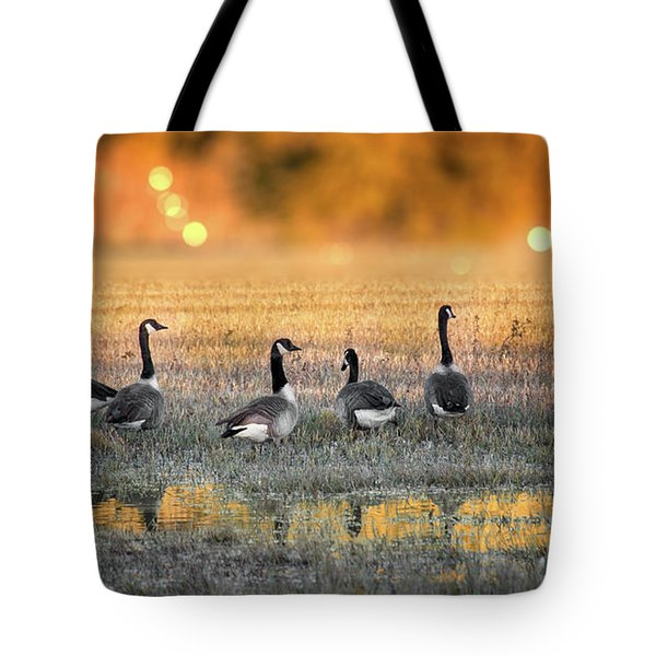 Little Piece Of Heaven Tote Bag