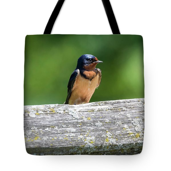 Tote Bag featuring the photograph Little Barn Swallow by Ricky L Jones