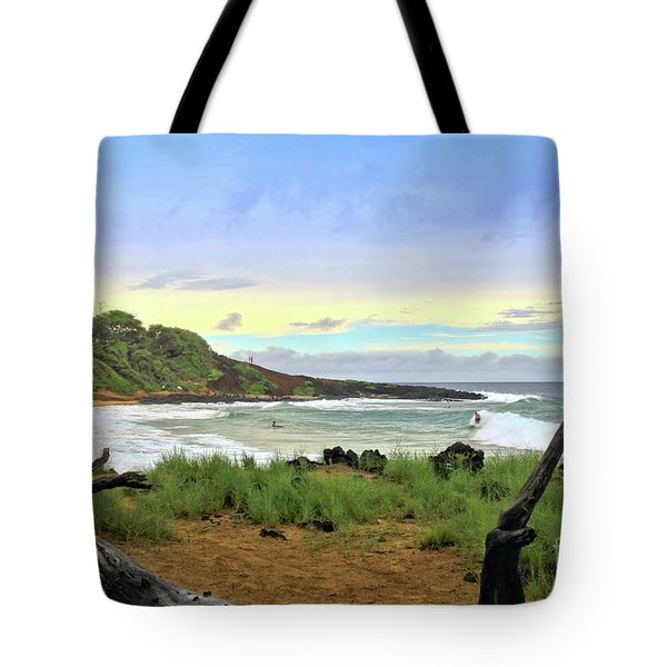 Tote Bag featuring the photograph Little Beach by DJ Florek