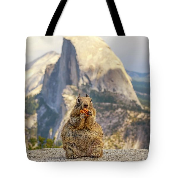 Little, Big Squirrel Tote Bag by Joseph S Giacalone