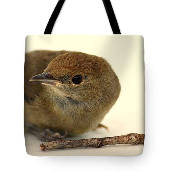 Little Bird 2 Tote Bag