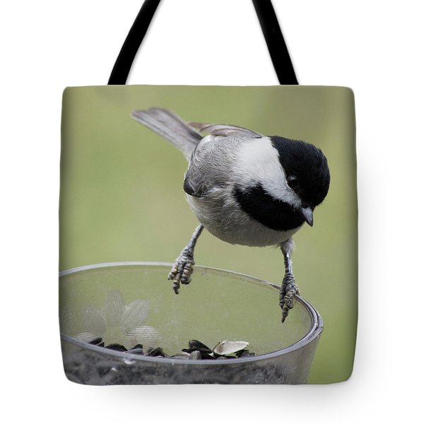 Little Bird Looking For A Handout Tote Bag by Jimmie Bartlett