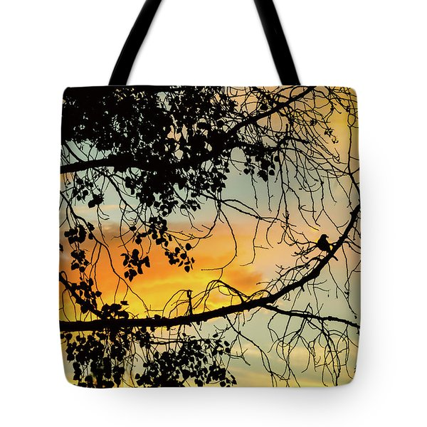 Tote Bag featuring the photograph Little Birdie Told Me So by James BO Insogna