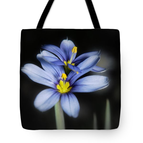 Little Blue Flowers Tote Bag by Karen Musick