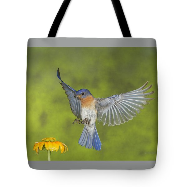 Little Blue Tote Bag