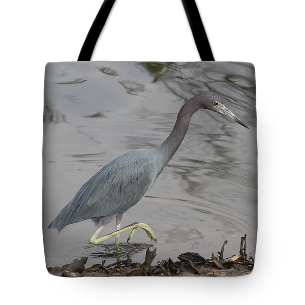 Tote Bag featuring the photograph Little Blue Heron Walking by Christiane Schulze Art And Photography