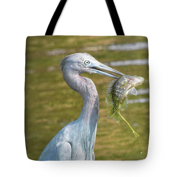 Little Blue Shows Me Its Catch Tote Bag