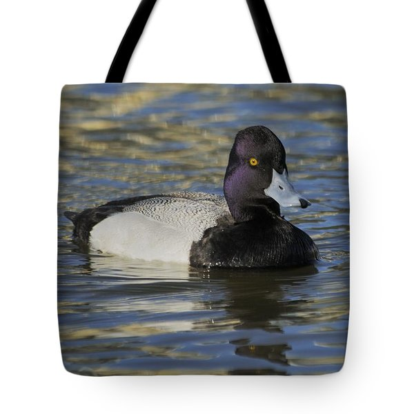 Tote Bag featuring the photograph Little Bluebill - Lesser Scaup Drake by Bradford Martin