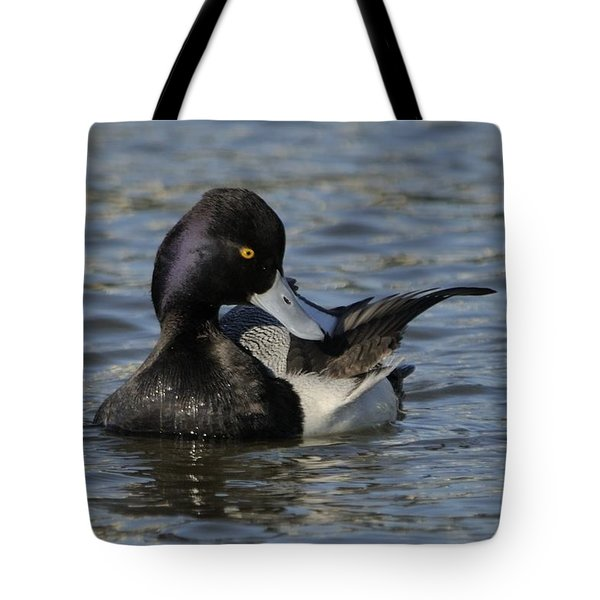 Tote Bag featuring the photograph Little Bluebill Preening by Bradford Martin