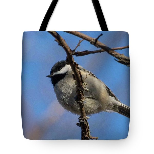 Little Chickadee Tote Bag