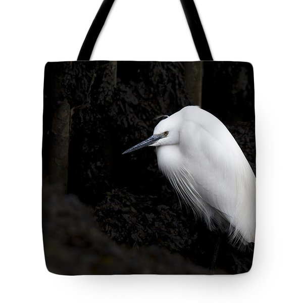 Little Egret Tote Bag