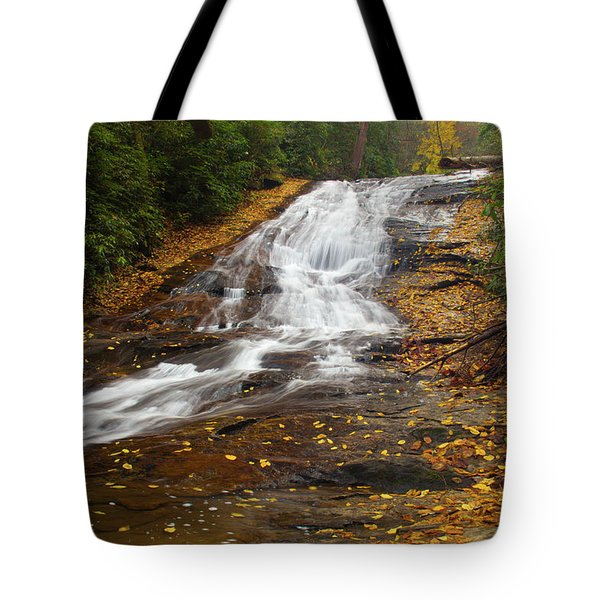 Little Fall Tote Bag