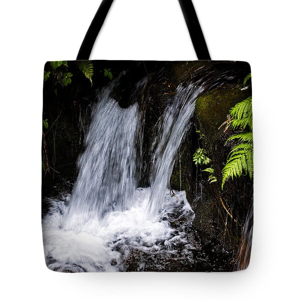 Little Falls Tote Bag by Christopher Holmes
