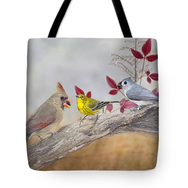 Little Gathering Of Feathered Friends Tote Bag