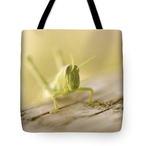 Little Grasshopper Tote Bag