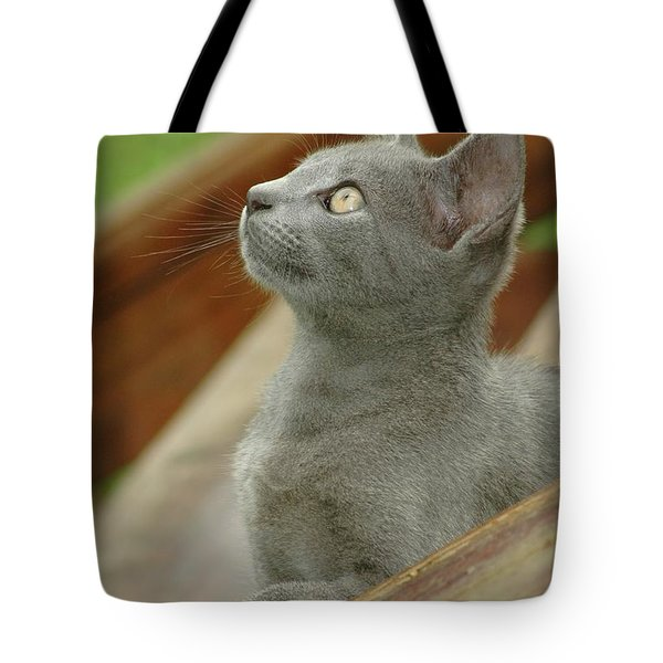 Little Gray Kitty Cat Tote Bag