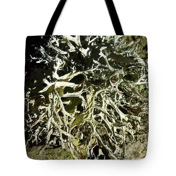 Little Labyrinth Tote Bag