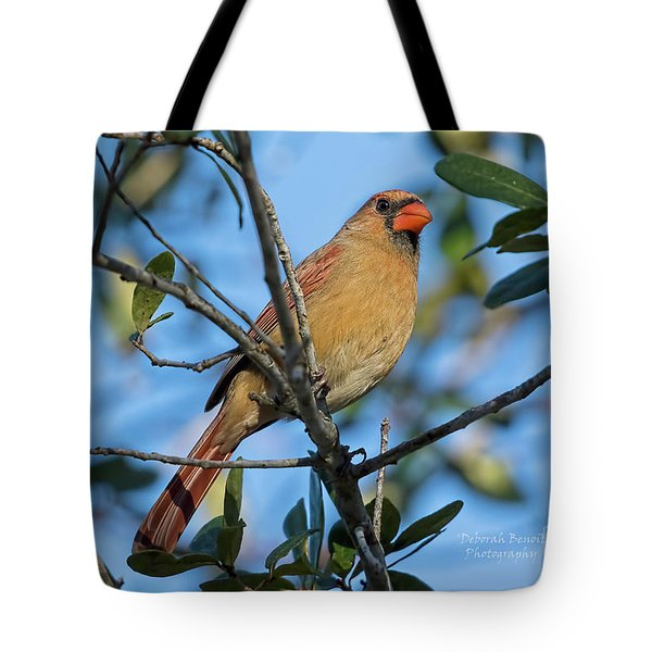 Little Lady Red Tote Bag