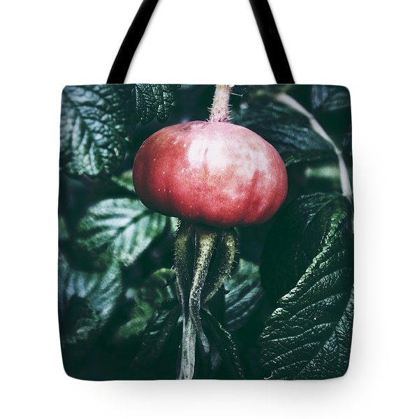 Tote Bag featuring the photograph Little Lady Rosehip by Karen Stahlros