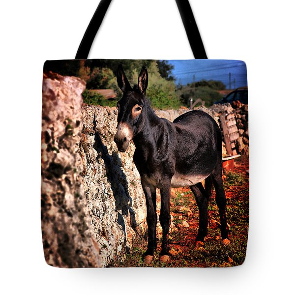 Little Mediterranean Donkey Dream Color With White Eyes And Belly  Hdr By Pedro Cardona Tote Bag by Pedro Cardona Llambias