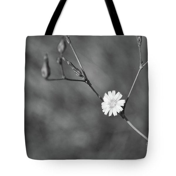 Tote Bag featuring the photograph Little One by Ana V Ramirez