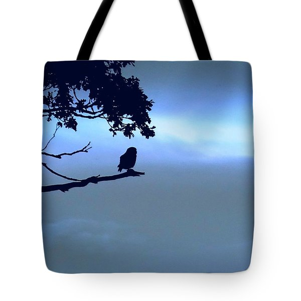 Little Owl Watching Tote Bag