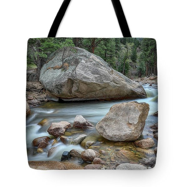 Tote Bag featuring the photograph Little Pine Tree Stream View by James BO Insogna