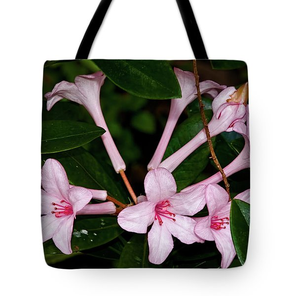 Little Pinks Tote Bag by Christopher Holmes