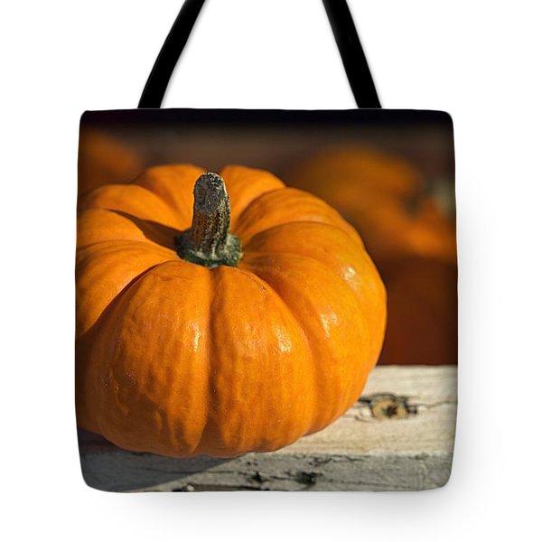 Little Pumpkin Tote Bag by Joseph Skompski