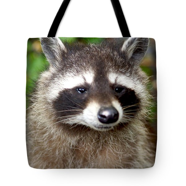 Little Racoon - Procyon Lotor Tote Bag